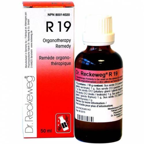 Dr. Reckeweg R19 Euglandin-M Gotas 50 ml