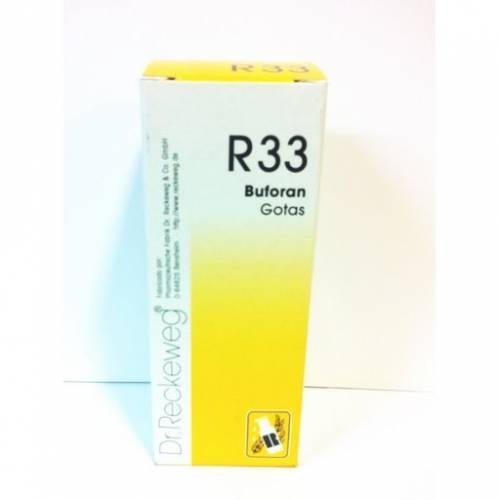 DR RECKEWEG R33
